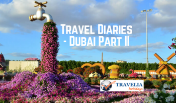 Travel Diaries- Dubai [Part 2]